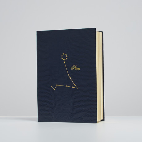 Pisces Constellation Notebook