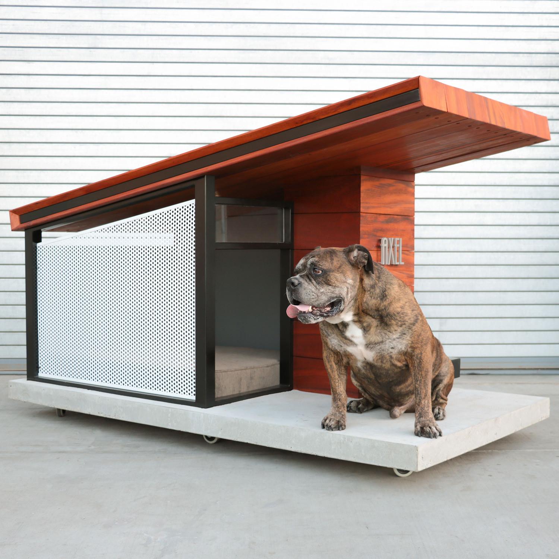 mdk9 dog haus small rah design touch of modern. Black Bedroom Furniture Sets. Home Design Ideas