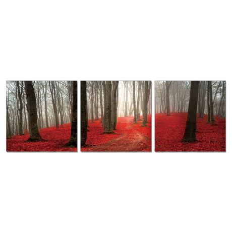 "Crimson Wood (60""W x 20""H x 1""D)"