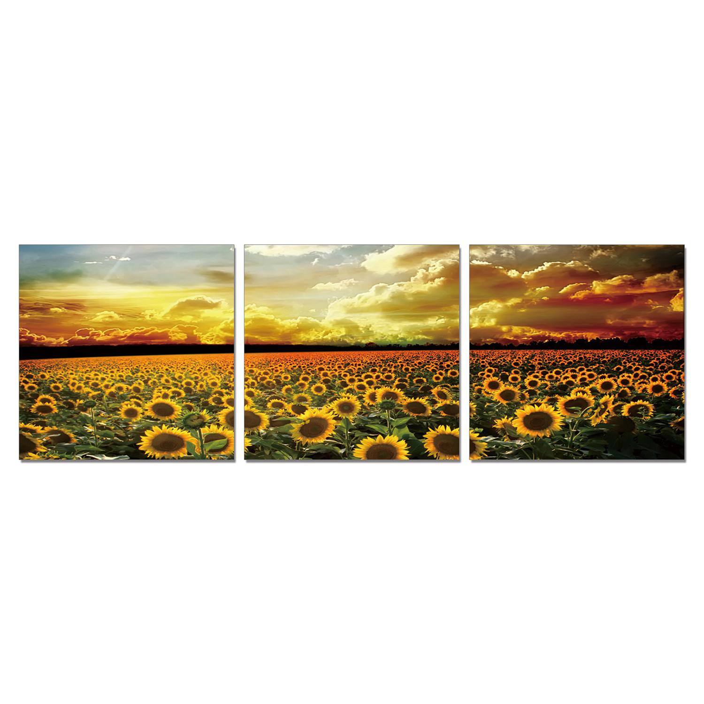 940f117679 Perfect Prairie (60