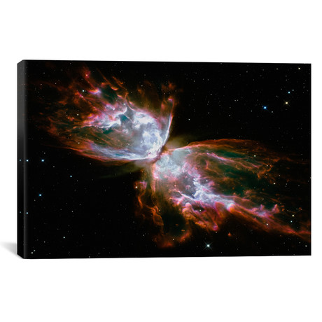 "Butterfly Nebula (Hubble Space Telescope) // NASA (40""W x 26""H x 1.5""D)"