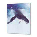 "The Great Escape // Aluminum Print (16""W x 24""H x 0.2""D)"