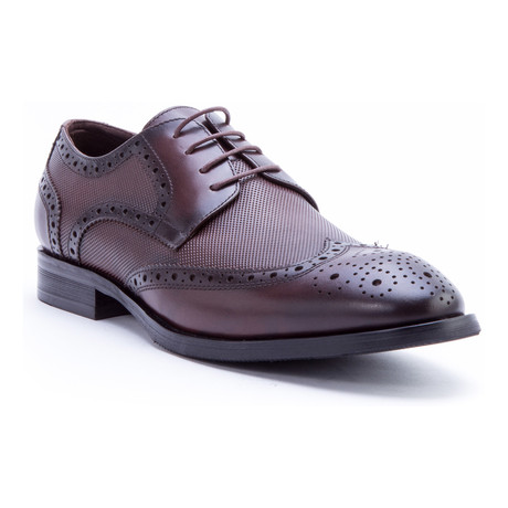 Rossini Medallion Wing-Tip Derby // Brown (US: 8)
