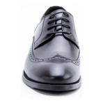 Williams Wing-Tip Derby // Black (US: 9)