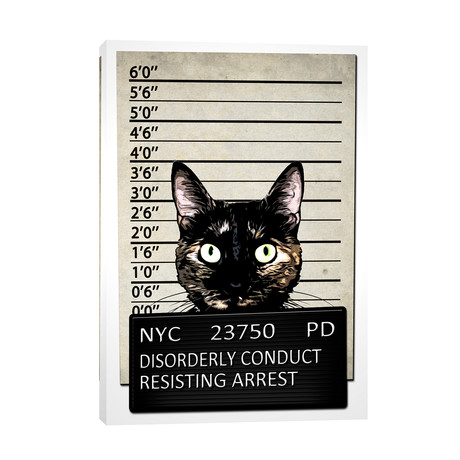 "Kitty Mugshot (12""W x 18""H x 0.75""D)"