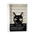 """Kitty Mugshot (12""""W x 18""""H x 0.75""""D)"""