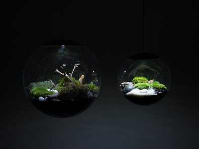 """Photo of Richard Clarkson Studios Incredible Cloud Lamps Globe // Suspended Terrarium (8"""" Terrarium + LED Light) by Touch Of Modern"""