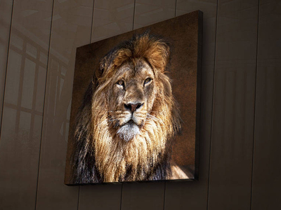 Wallity Backlit LED Canvas Prints Lion by Touch Of Modern - Denver Outlet
