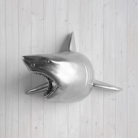 The Pacific Faux Shark Head