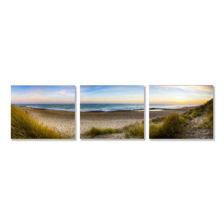Among the Dunes Triptych