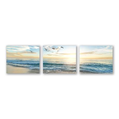 Soar Triptych