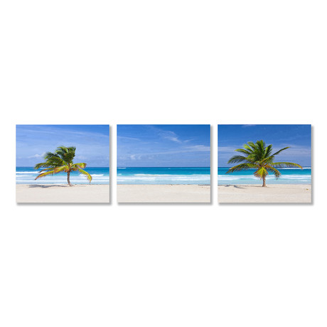 Two Palms Triptych