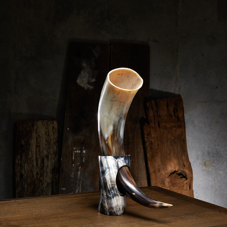 Polished Short Buffalo Drinking Horn + Stand