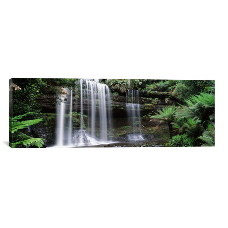 "Waterfall in a forest, Russell Falls, Mt Field National Park, Tasmania, Australia // Panoramic Images (60""W x 20""H x 0.75""D)"