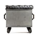 Mini Dumpster // Raw