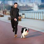 Go-Smart Pet Leash