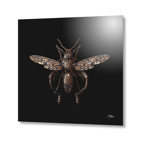 Engraved Entomology C // Aluminum Print