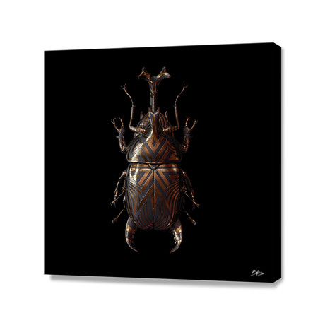 Engraved Entomology A // Stretched Canvas