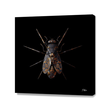 Engraved Entomology E // Stretched Canvas