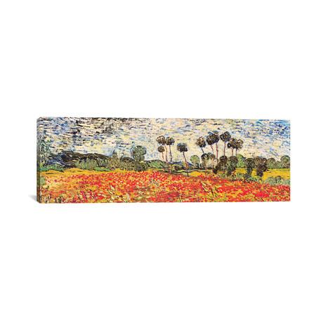 Field Of Poppies // Vincent Van Gogh