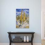 "The Poplars at Saint-Remy // Vincent van Gogh // 1889 (18""W x 26""H x 0.75""D)"