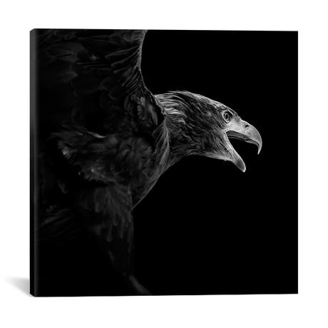 """Eagle (18""""W x 18""""H x 0.75""""D)"""