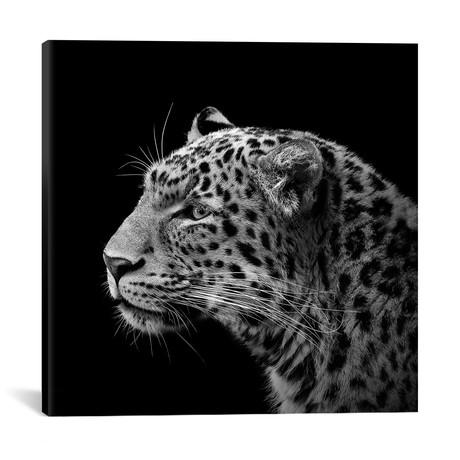 "Leopard I // Lukas Holas (18""W x 18""H x 0.75""D)"