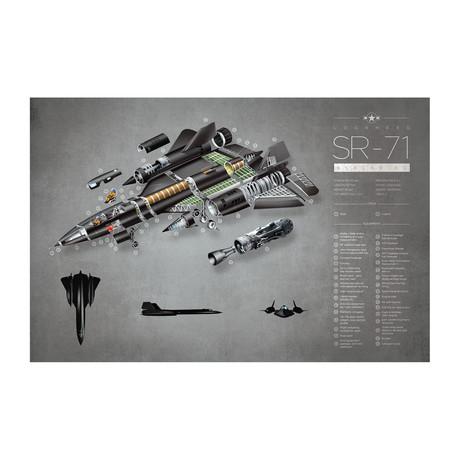 """SR-71 (11""""W x 17""""H)"""