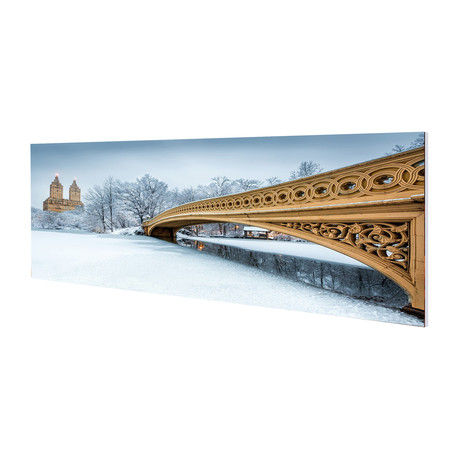 Snowfall Central Park