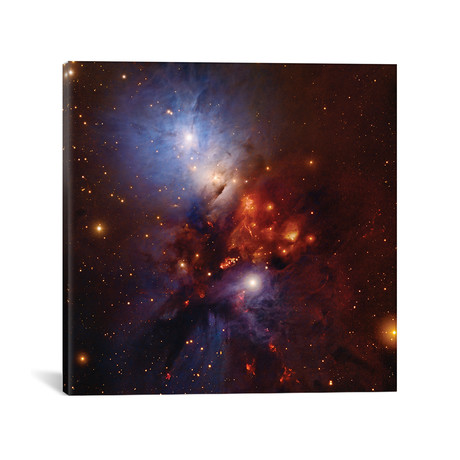 Complex Nebula In Perseus (NGC 1333)