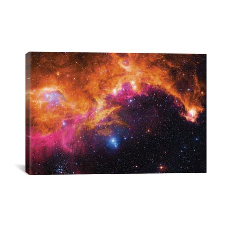 "Seagull Nebula (IC 2177) II // Robert Gendler (40""W x 26""H x 1.5""D)"