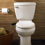 Boss Bidet BOLD (Black + Gold)