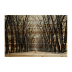 "Giant Tree Lane Painting Print // Natural Pine Wood (18""W x 12""H x 1.5""D)"