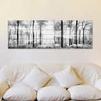 "Bright White Forest // White Wood (30""W x 10""H x 1.5""D)"