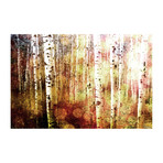 "Sunspotted Trees Painting Print // Canvas (18""W x 12""H x 1.5""D)"