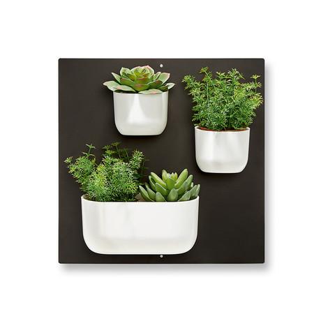 Vertical Garden Magnets // 4 Piece Set
