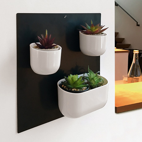 Vertical Garden Magnets // 4 Piece Set