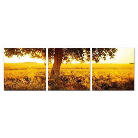 "Sunrise Awakening (60""W x 20""H x 1""D)"