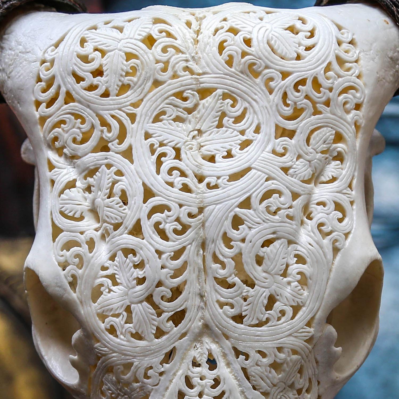 Hand Carved Cow Skull // Vine 2