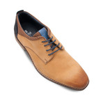 Lace-Up Blucher // Camel (Euro: 40)