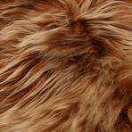 Brown Icelandic Sheepskin
