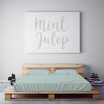 Moisture Wicking 1500 Thread Count Soft Sheet Set // Mint Julep (Full)