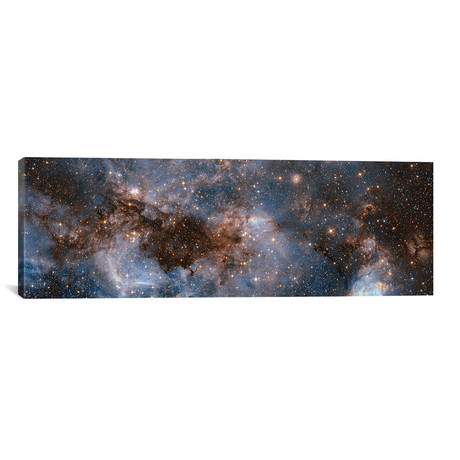 "Glowing Stardust // NASA (60""W x 20""H x 0.75""D)"