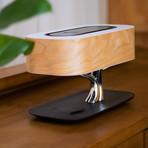 Tree of Light (Micro USB // Bluetooth Speaker)