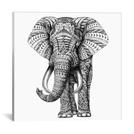 Ornate Elephant I