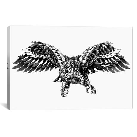 Ornate Falcon
