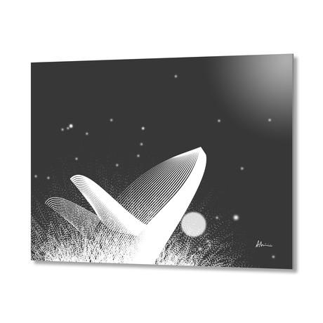 Whale BW // Aluminum