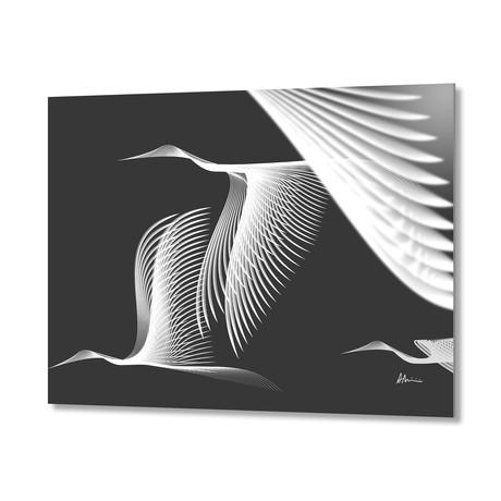 Cranes BW // Aluminum