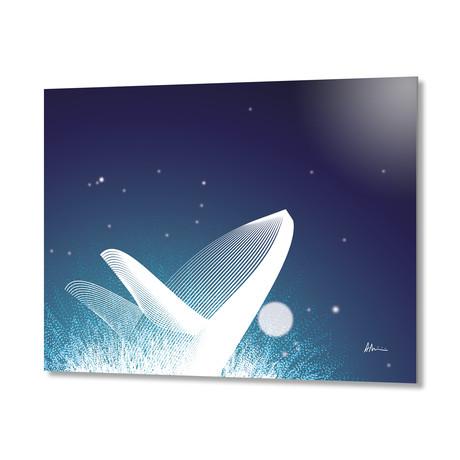 Whale // Aluminum