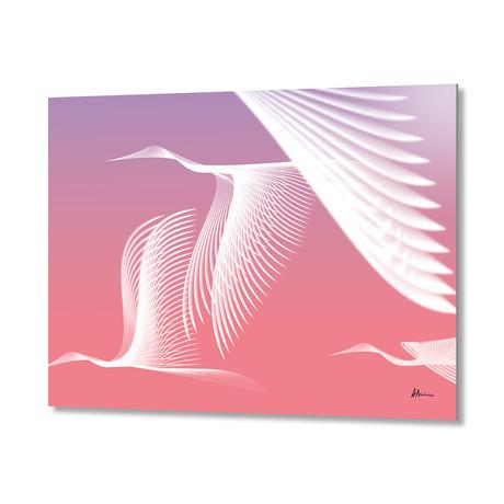 Cranes // Aluminum